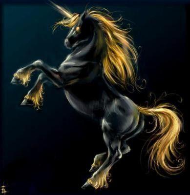 Belle image de licorne - Image de licorne ...